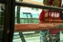 Audiência pública debate isenção a gestantes no transporte público