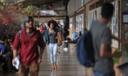 Concursos públicos em Curitiba poderão ter cota de 20% para negros e indígenas