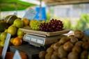 Na segunda, CMC vota divulgação obrigatória do preço de alimentos a quilo