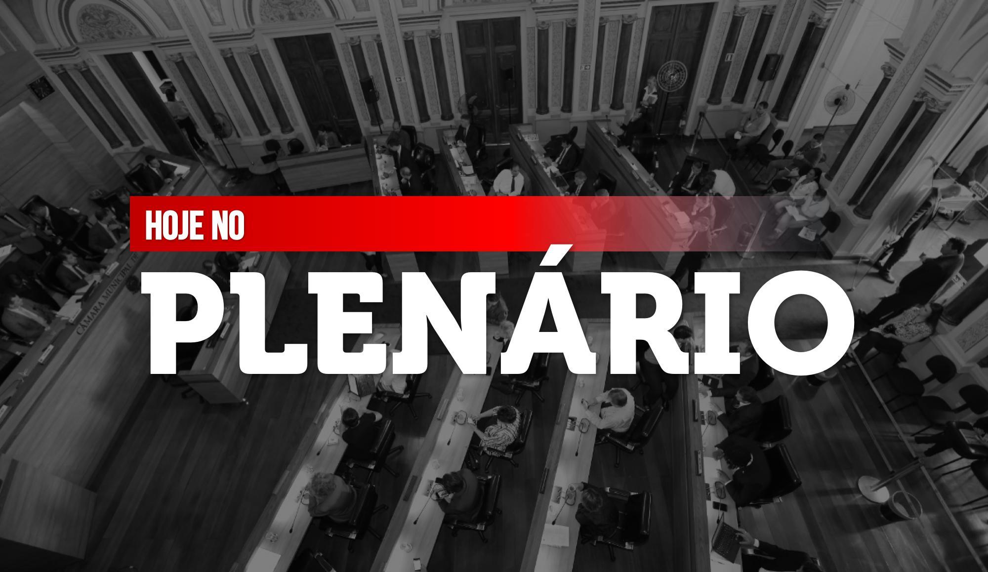 Notas da sessão plenária de 10 de agosto