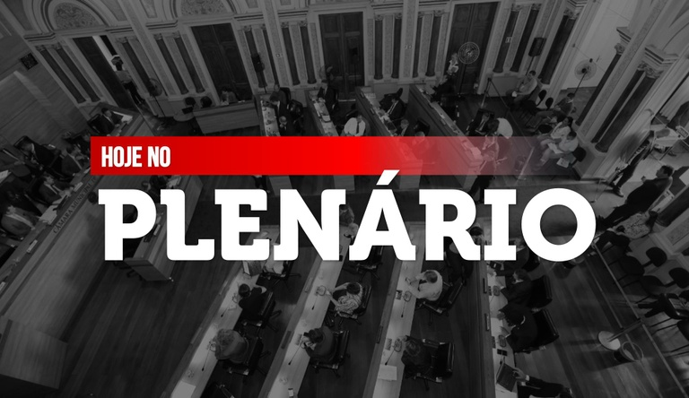 Notas da sessão plenária de 15 de junho
