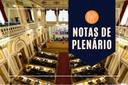 Notas da sessão plenária de 17 de maio