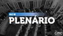 Notas da sessão plenária de 2 de setembro