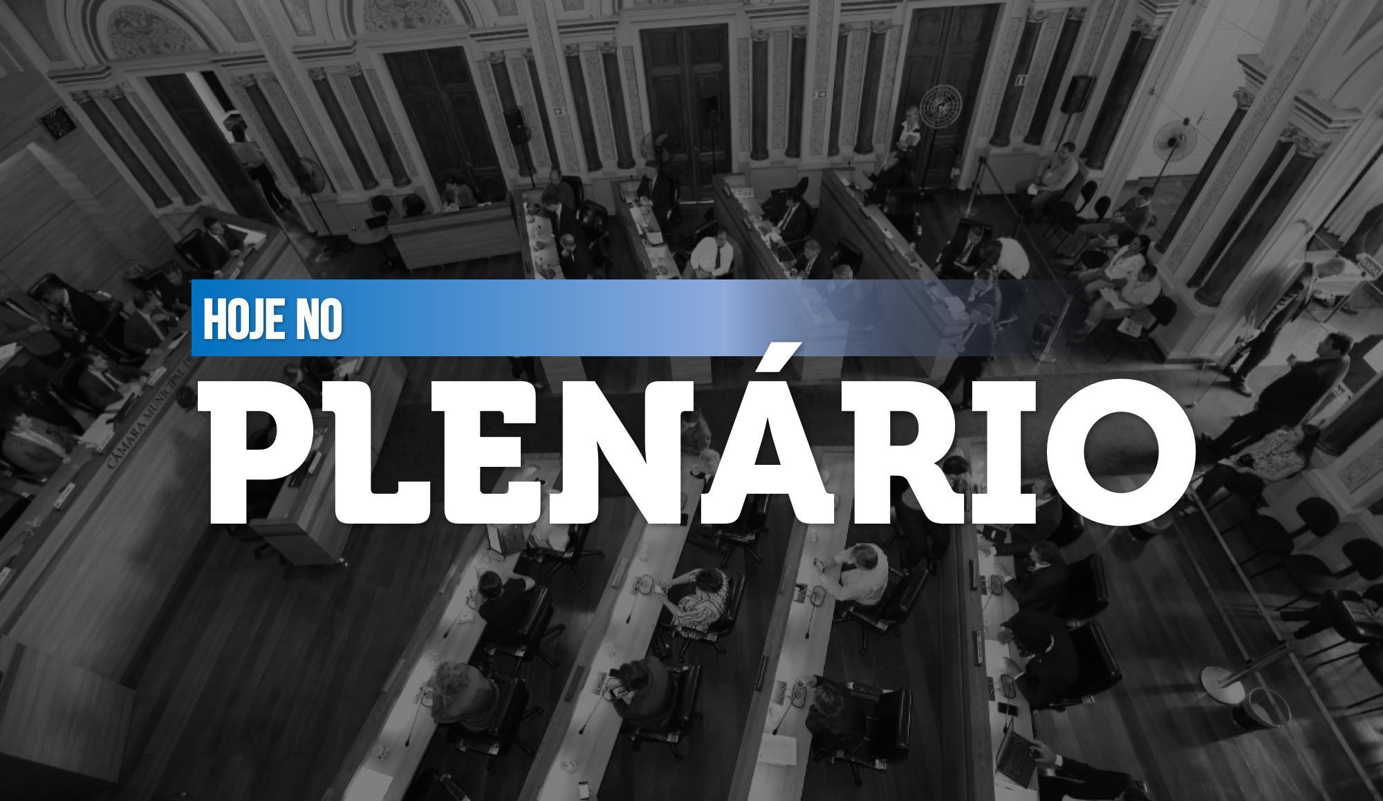 Notas da sessão plenária de 4 de agosto