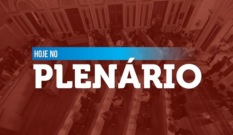 Notas de sessão plenária de 20 de maio - 1ª edição