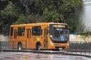 Projeto limita a 50% lotação máxima nos ônibus de Curitiba na pandemia