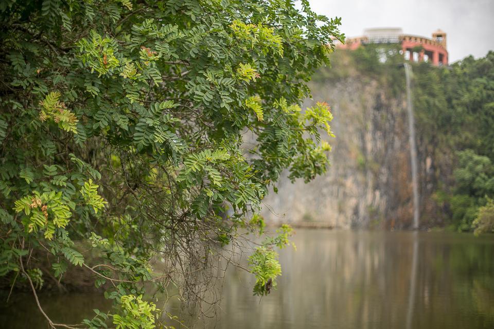 Projetos em prol do meio ambiente são afinidades entre vereadores de Curitiba