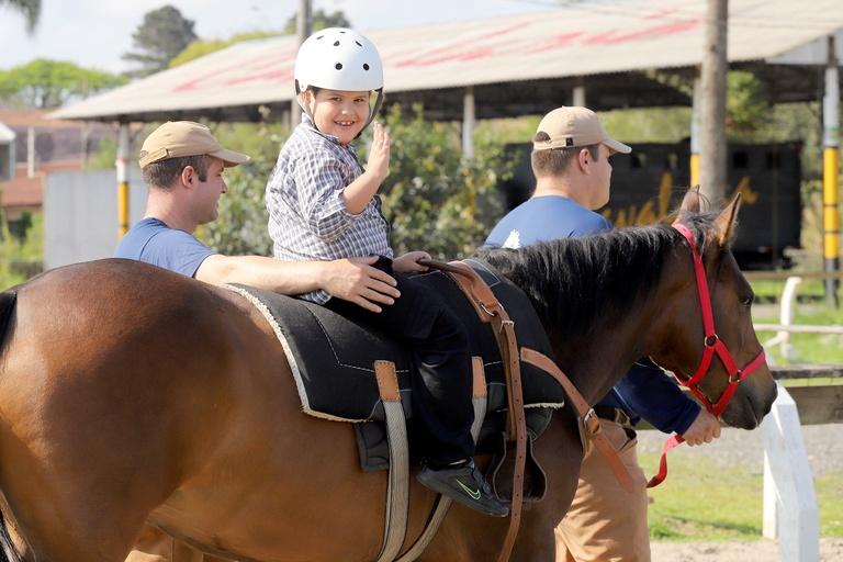 Terapia com cavalos pode virar programa municipal de saúde em Curitiba
