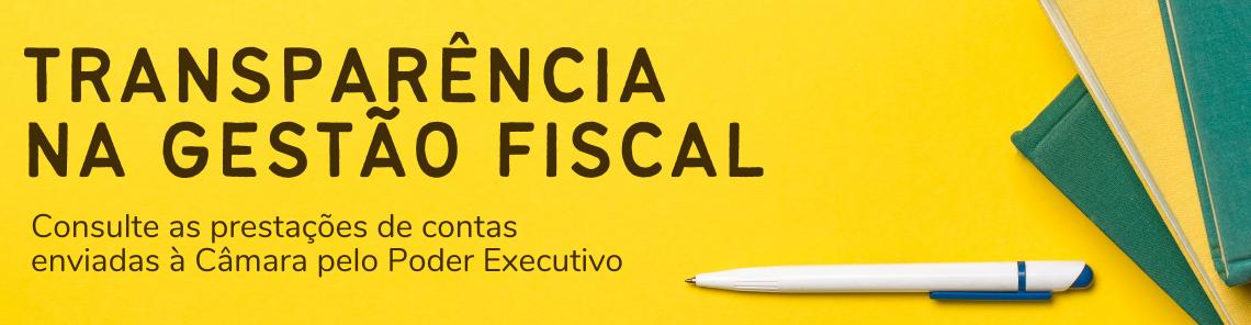 Banner de topo site transparência na gestão fiscal